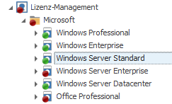 Windows Server Standard im LOGINventory Lizenzmanagement auswählen