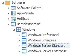 Windows Server in den Betriebssystemen bei LOGINventory auswählen