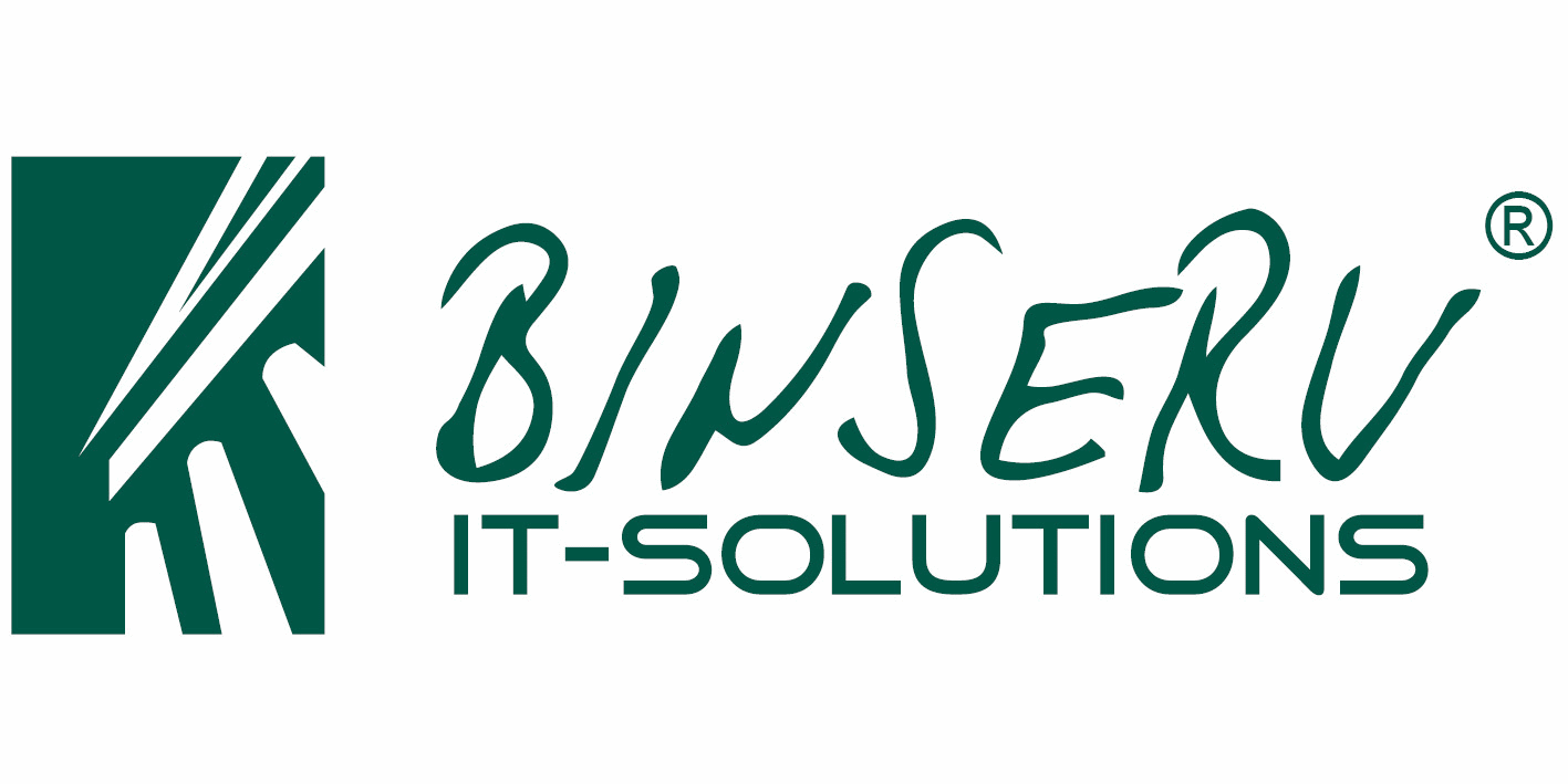 BINSERV Logo